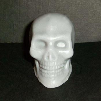 Hugo ~ a Skull